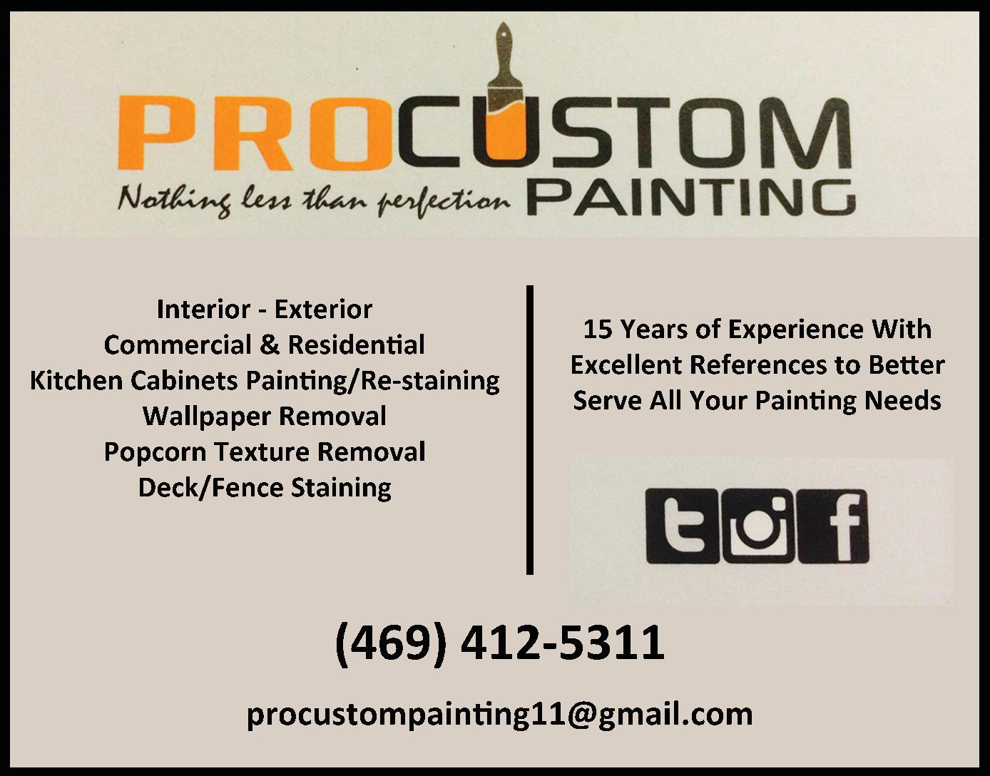 Pro Custom Painting