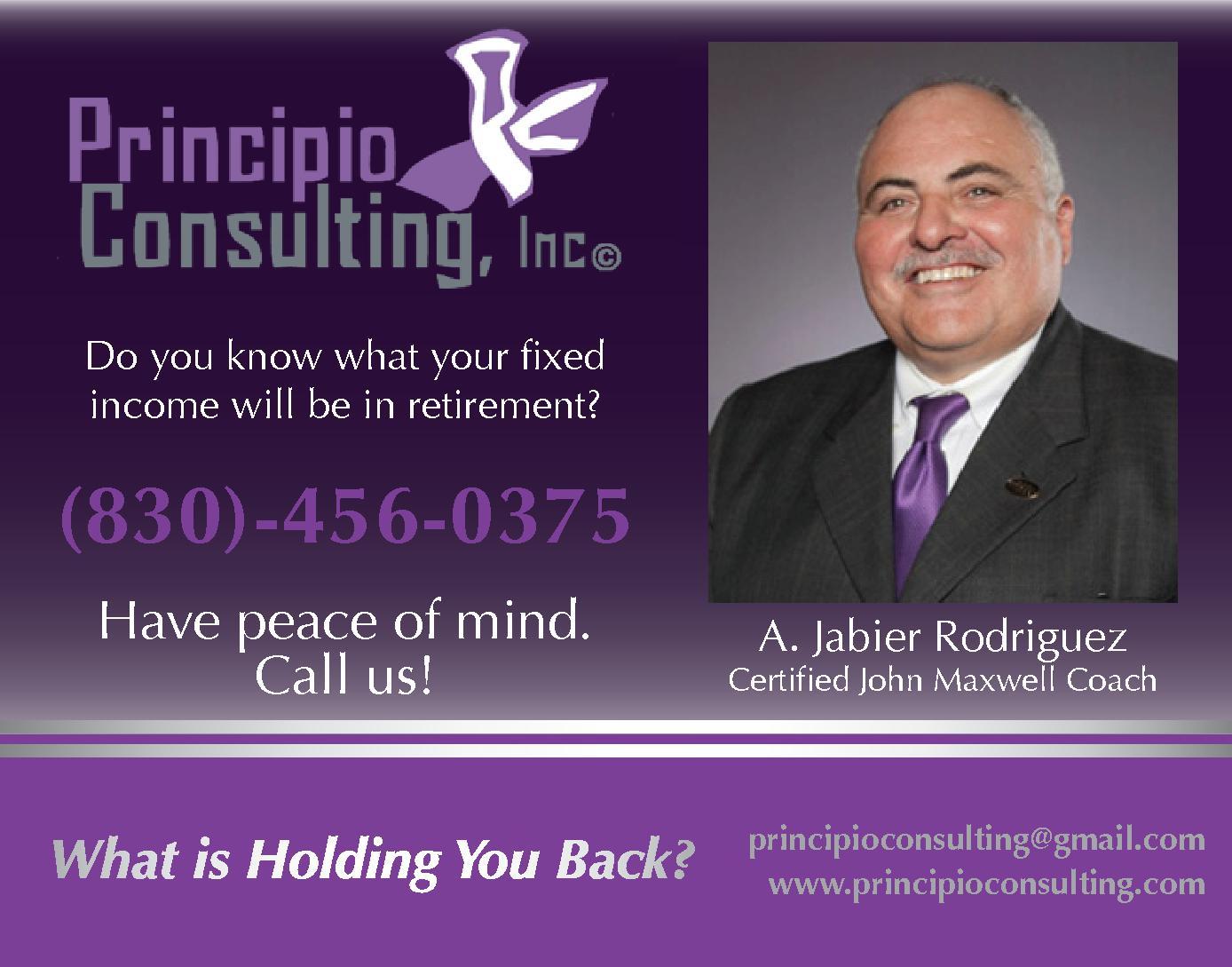 Principio Consulting, Inc.